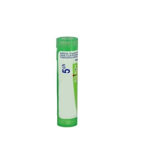 BOIRON Sulfur 5 CH granulki 4 g | Apteka internetowa, antyperspirant, avent, bioderma, bioliq, canpol, cera trądzikowa preparaty, dermokosmetyki, geriavit, grzybica leki bez recepty, himalaya, kreon, leki bez recepty, leki na grypę, leki na przeziębienie, leki na uspokojenie, mascara med., maxigra go, maxon, mensil, mugga, mustela, odchudzanie leki, odporność, pirolam, tabletki na ból gardła, test ciążowy, tran mollers, vichy, witamina d, wszy preparaty, zapalenie stawów, zestawy kosmetyków, ziaja